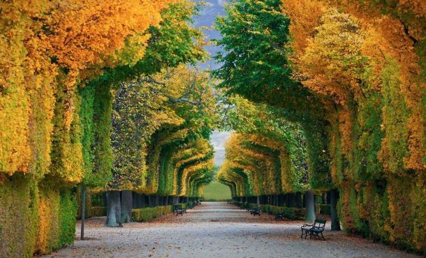 Βιέννη...like alocal στην πρωτεύουσα του βαλς (Αναχωρήσεις απο Αθηνα)