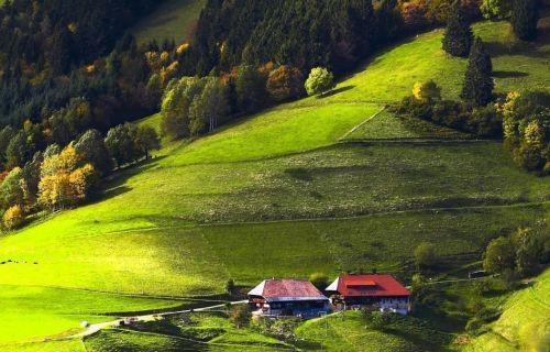 Στρασβούργο - Χωριά Αλσατίας - Δρόμοι Κρασιού - Μέλας Δρυμός & Χαιλδεβέργη